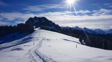 Schneeschuhwanderung Chli Aubrig