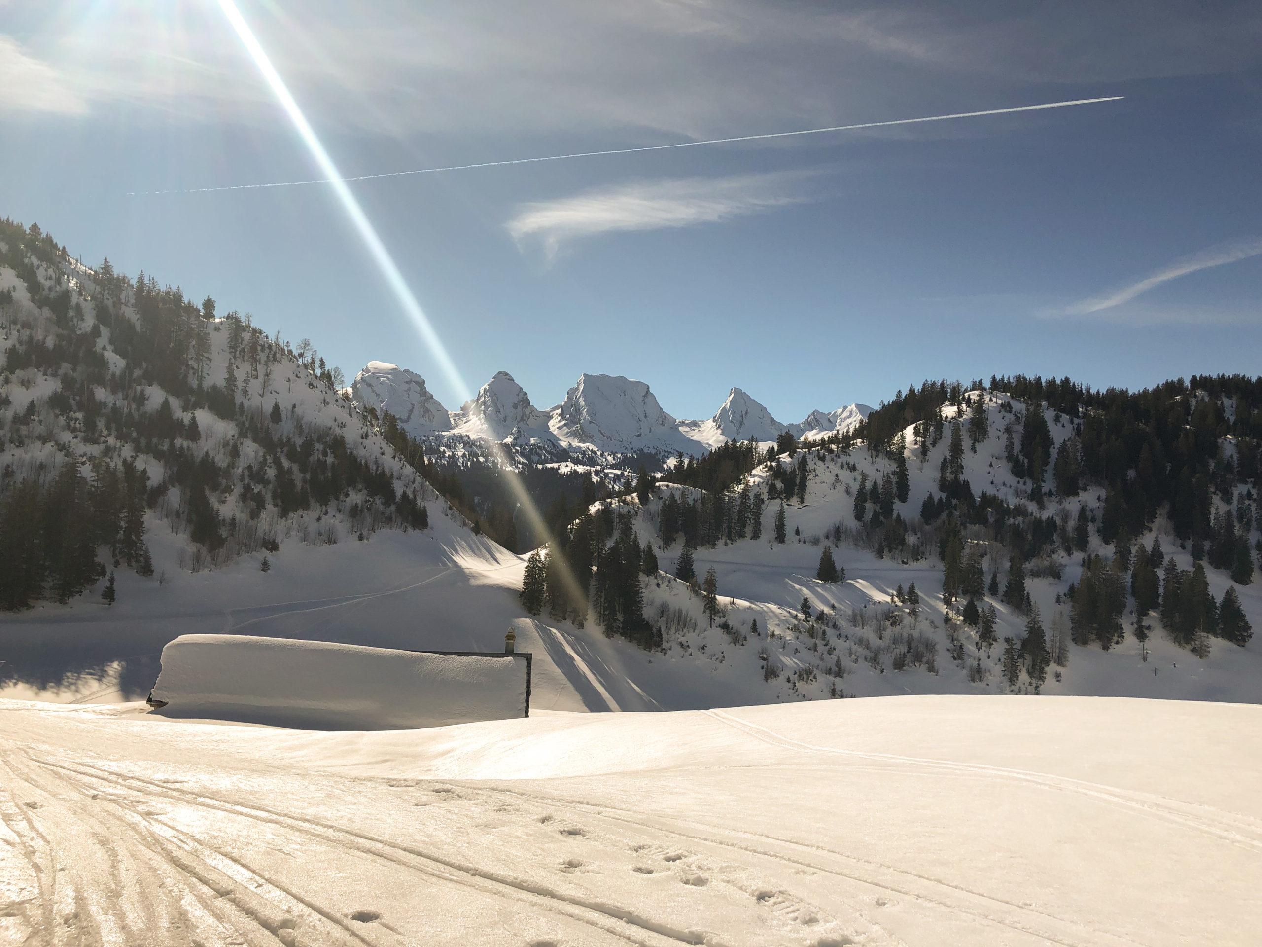 Schneeschuhwanderung Toggenburg